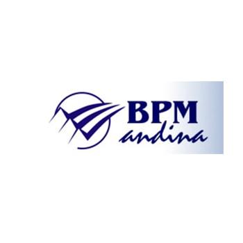 BPMandina